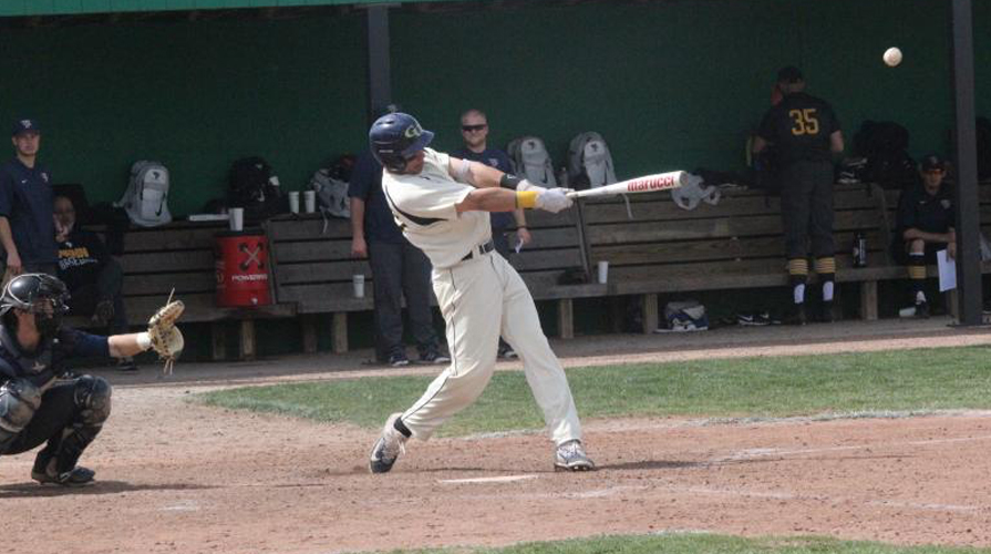 Photo for Graceland Splits with No. 11 Clarke, Drops Series 3-1