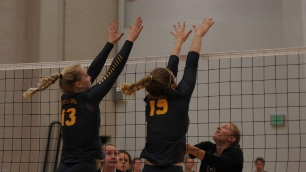 Photo for Volleyball Comes Up Short Against Vikings