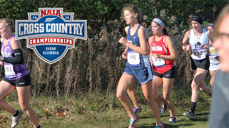 Photo for Tabor Competed at NAIA XC Nationals